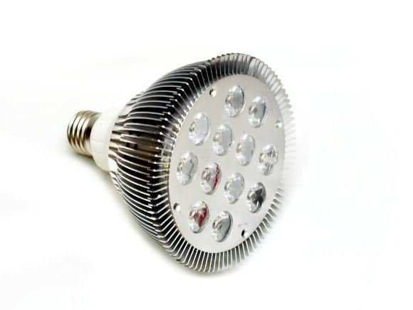 12W白光High-power  LED PAR38燈炮(90-260v)(L-PAR38-12WW)