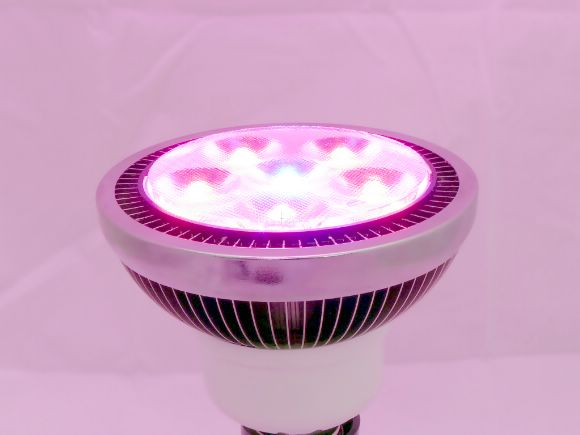 高功率High-power  LED Plant Grow Lights 10W植物燈泡(40度)(LLED-SBPAR30-10W-G)